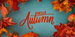 Slots: Herbstliche Spielautomaten